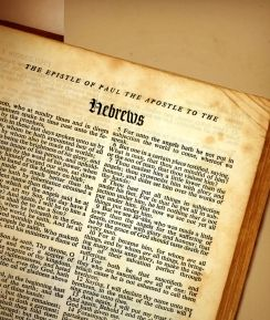 Who Wrote The Book Of Hebrews Reading Acts